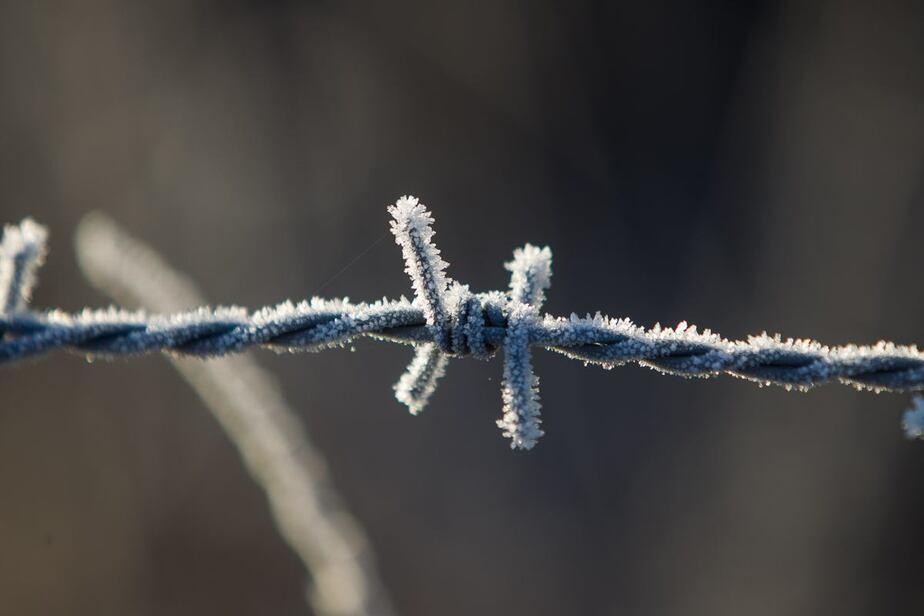 Со вторника в Калининград вернутся морозы и снег - Новости Калининграда