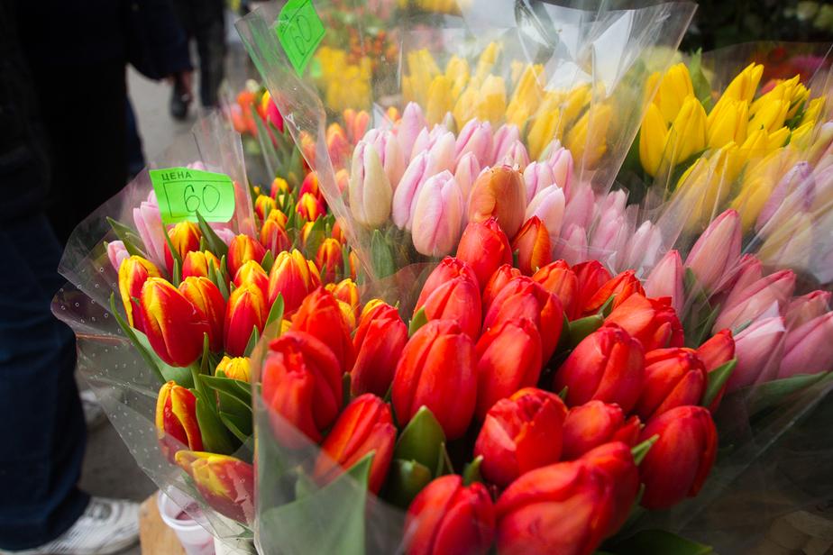 Калининградские школьники вместо покупки цветов для учителей отдали деньги больным детям - Новости Калининграда
