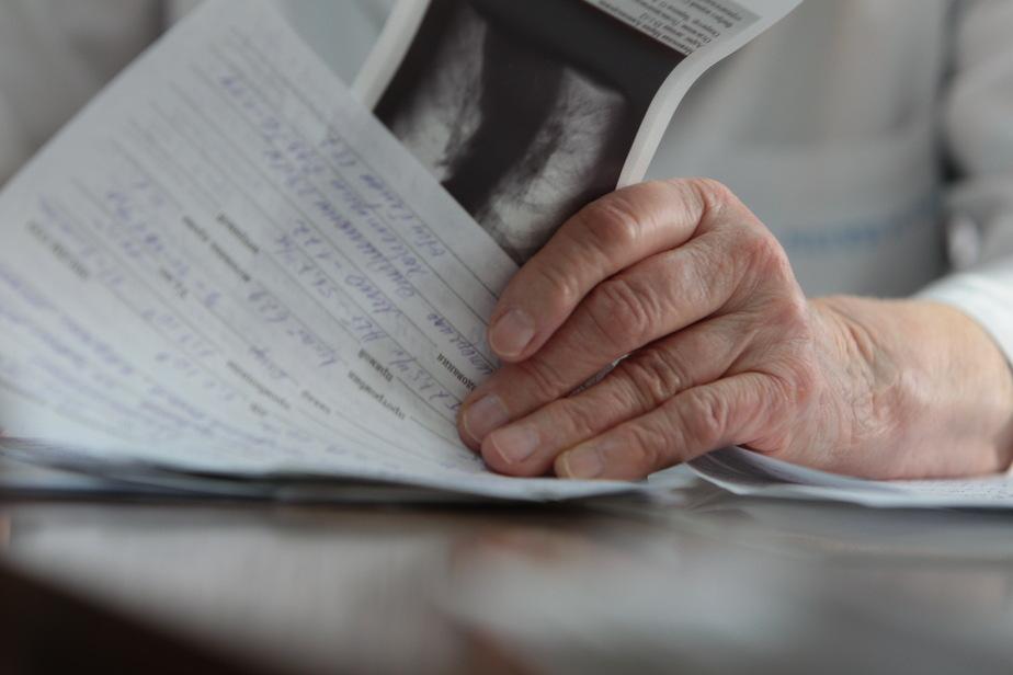 В России появится информационная база донорских органов - Новости Калининграда