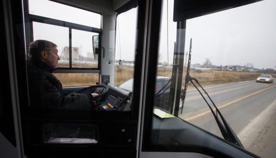В Калининграде 5 водителей автобусов не имели разрешения на работу