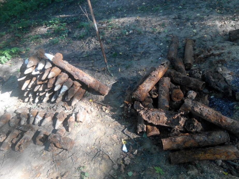 В лесу около калининградского правительства нашли склад боеприпасов - Новости Калининграда