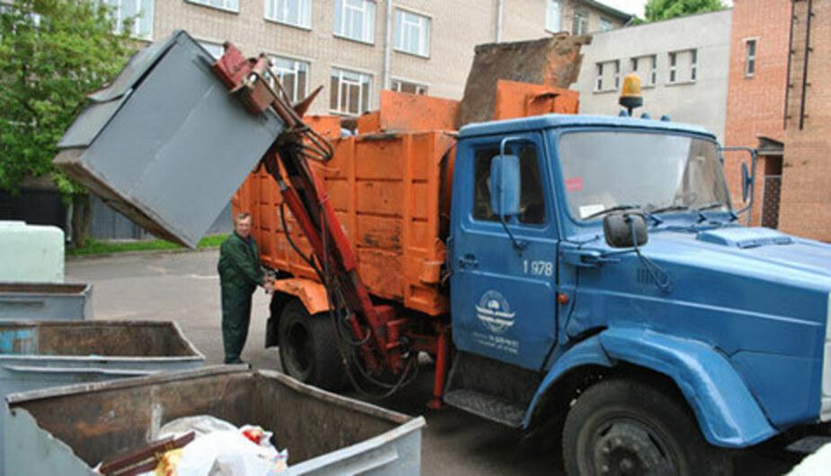 Калининградцы сдали в полицию водителя мусоровоза, умышленно сбившего собаку - Новости Калининграда