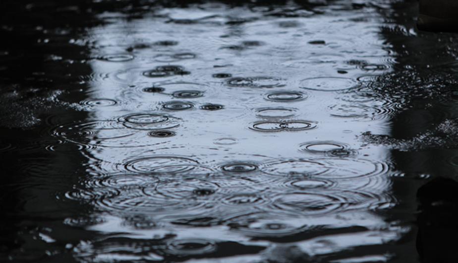 Синоптики: на следующей неделе в Калининграде пройдут дожди - Новости Калининграда