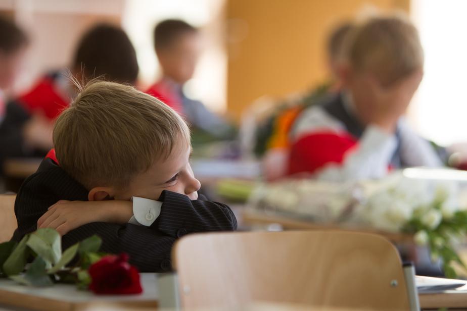 В 2017—2018 году российские школьники будут учить историю по новым учебникам - Новости Калининграда
