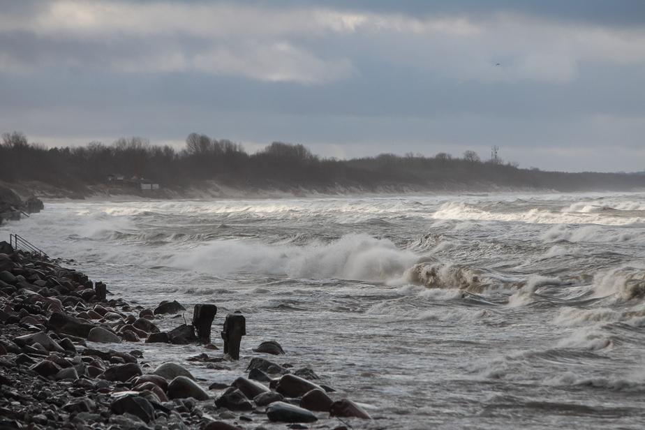 К вечеру пятницы порывы ветра в Калининграде усилятся до 19 м/с - Новости Калининграда