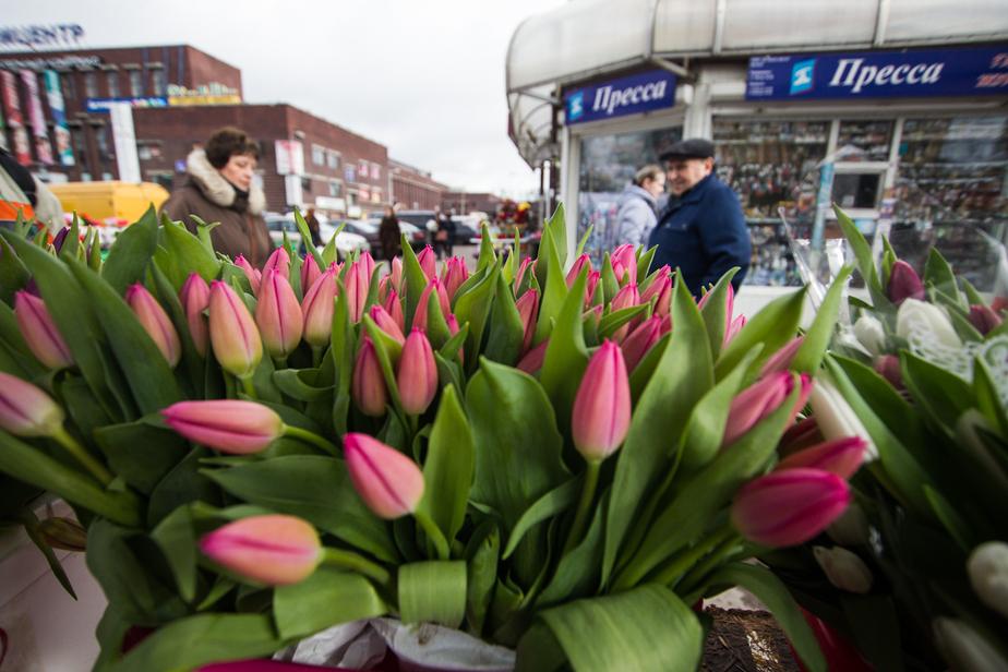 Россия запретила импорт цветов из Голландии - Новости Калининграда