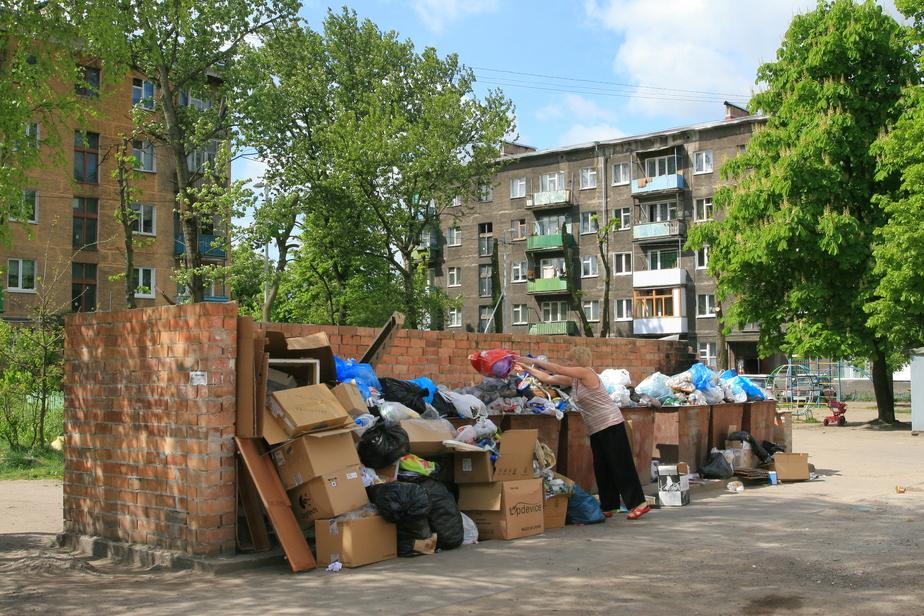 Калининградка через суд добилась переноса площадки для мусорных контейнеров   - Новости Калининграда
