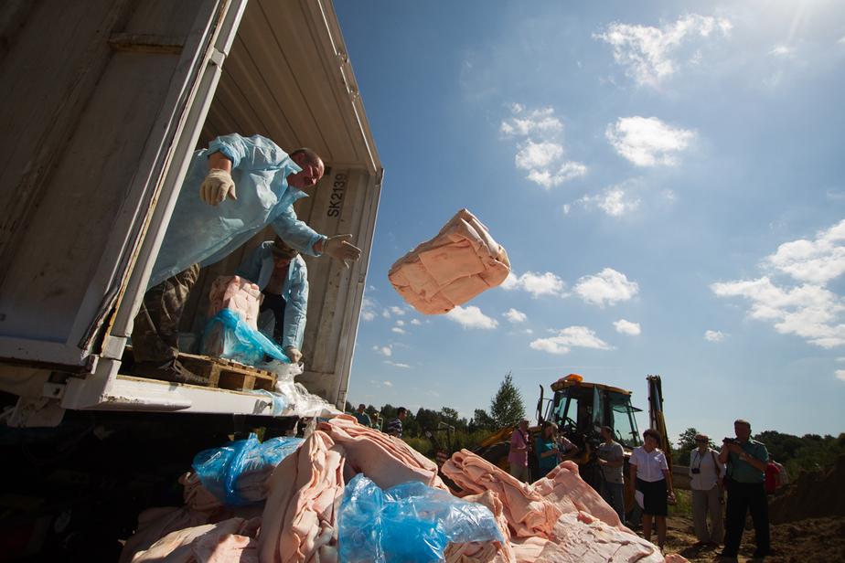 Ночью в Калининградской области уничтожили килограммы сыра и рыбы - Новости Калининграда