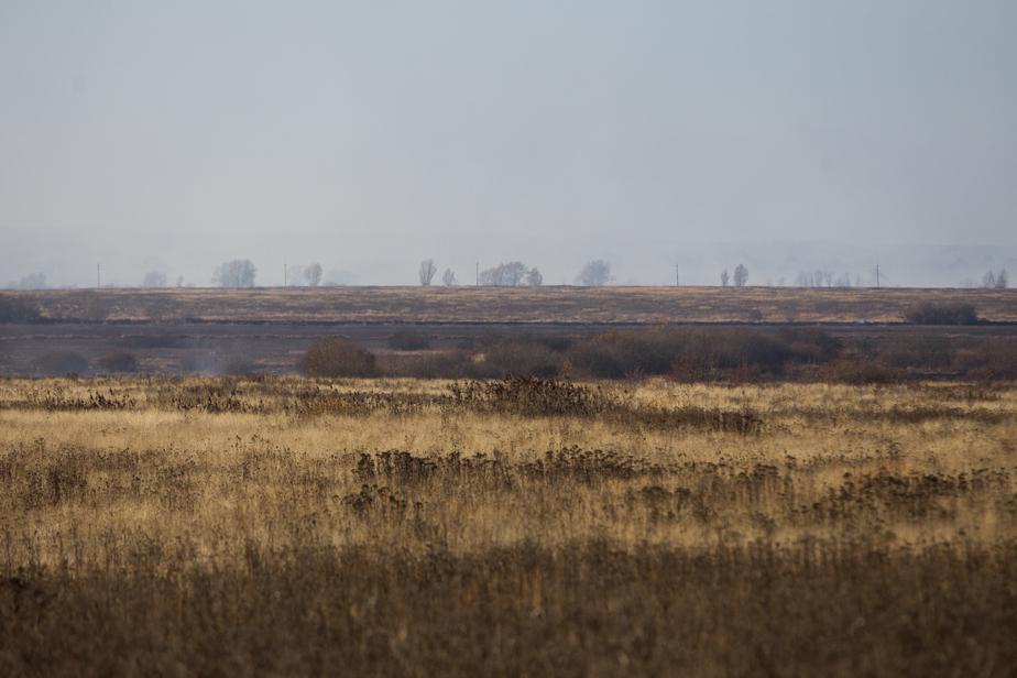 Калининградские депутаты хотят забрать у УФСИН пустующие сельхозземли - Новости Калининграда