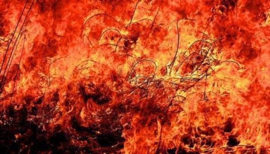 В Озёрском районе мужчина сжёг в соседнем селе 90 тонн сена - Новости Калининграда