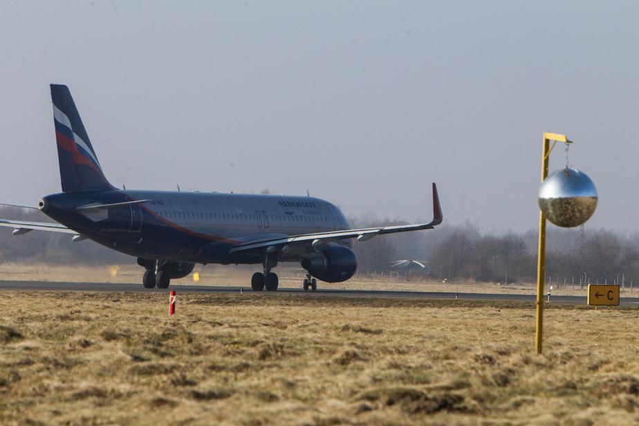 Спикер Госдумы сообщил о скором возобновлении авиасообщения с Египтом - Новости Калининграда