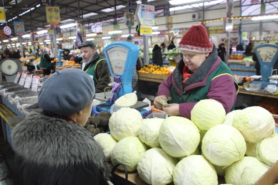 Российские депутаты просят отменить для Греции продуктовые санкции - Новости Калининграда