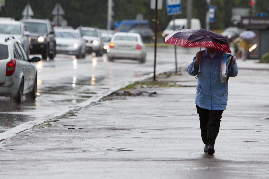 В Калининграде до конца месяца ожидается только один день без дождя  - Новости Калининграда