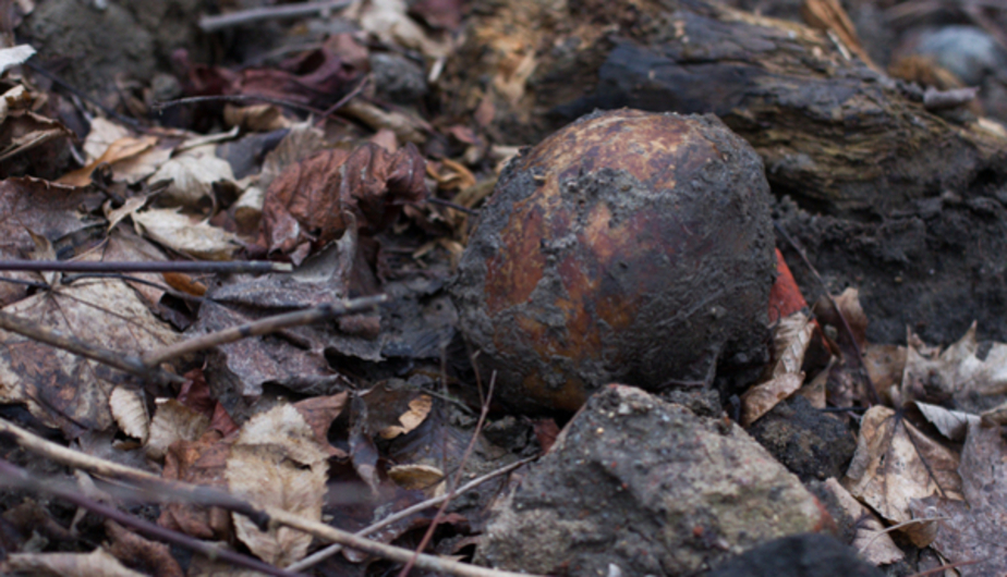 Офицер вермахта и гражданские: на стройке в Калининграде эксгумировали останки уже 84 человек - Новости Калининграда