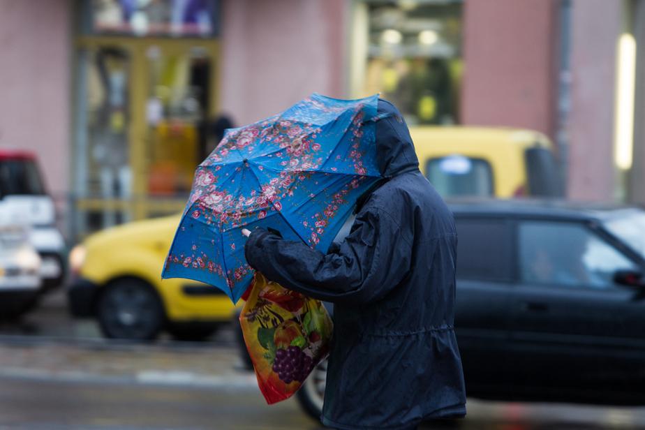 В Калининграде снова поднимется сильный ветер