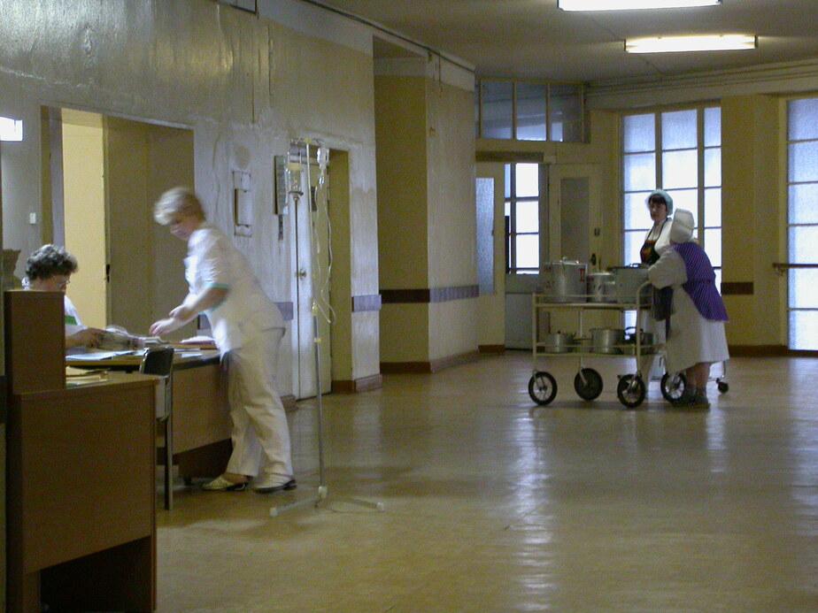 За 4 года в Калининградской области обнаружили 45 поддельных больничных - Новости Калининграда