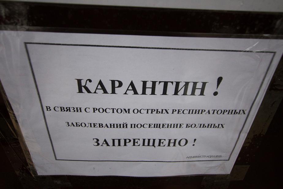 ВОЗ: в России нет эпидемии свиного гриппа, это сезонное обострение - Новости Калининграда