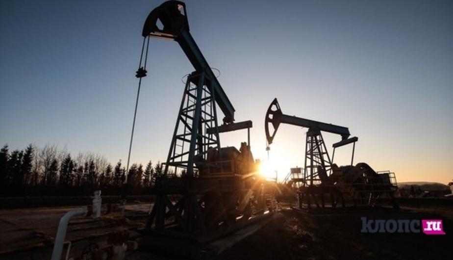 Рынок акций РФ растет вслед за нефтью - Новости Калининграда
