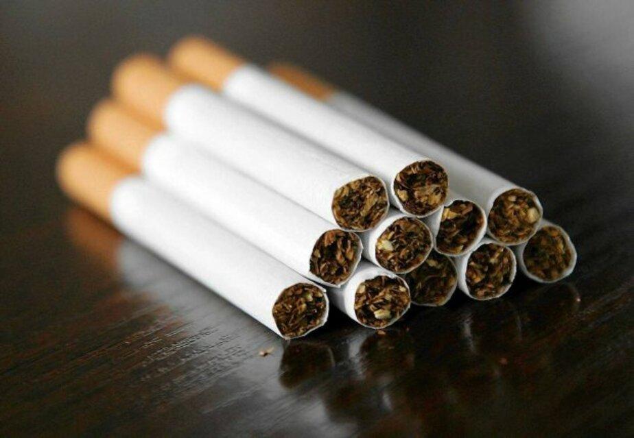 СМИ: каждая пятая сигарета в Польше - контрабандная - Новости Калининграда