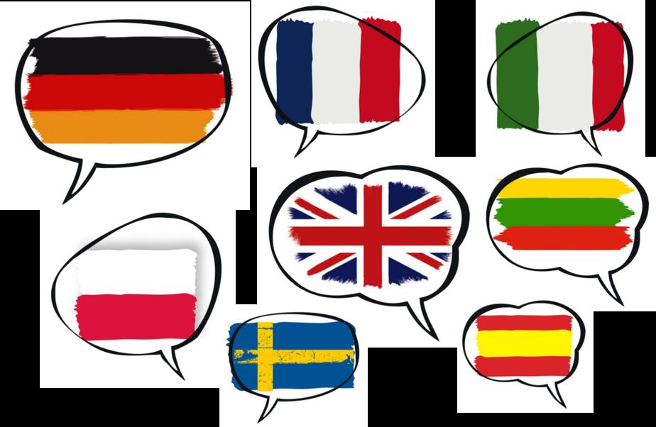 10 советов,как правильно выбрать курсы иностранных языков - Новости Калининграда