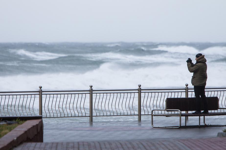 На следующей неделе в Калининграде ожидается усиление ветра - Новости Калининграда