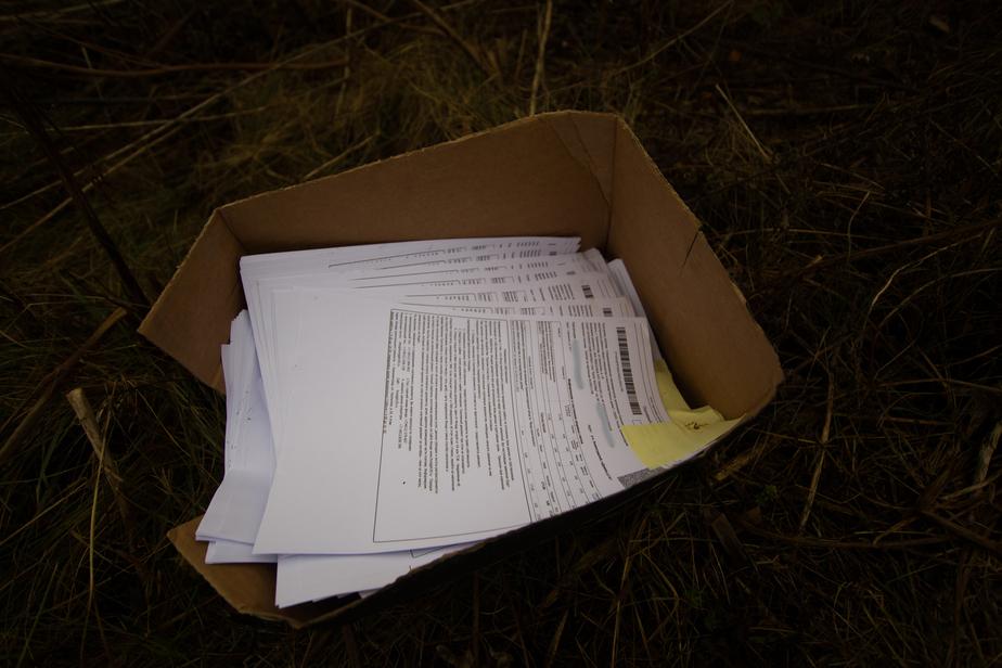 Уволен сотрудник, выбросивший в поле сотни квитанций за капремонт - Новости Калининграда