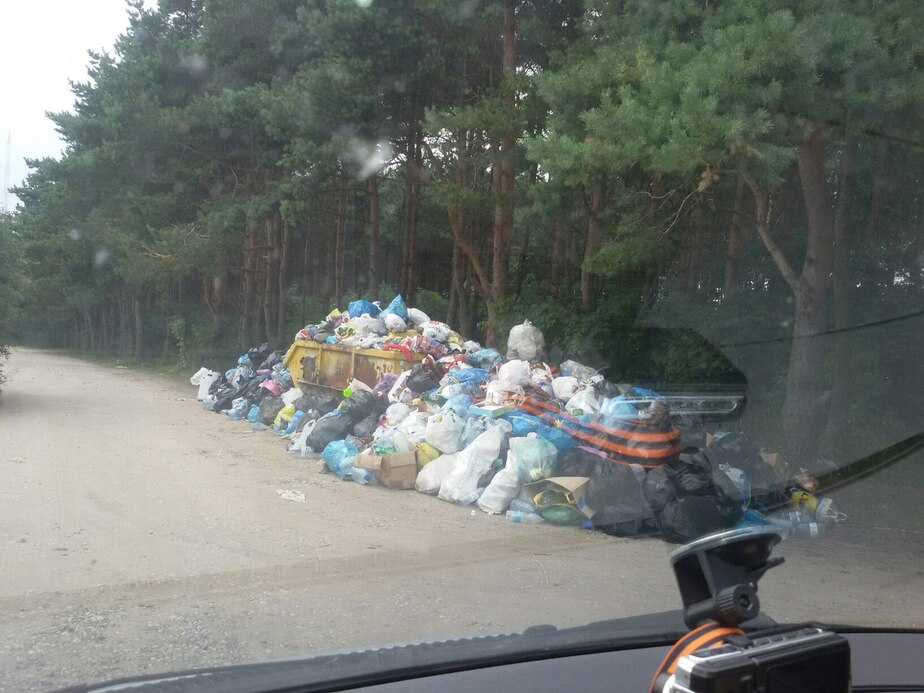Весь покрытый мусором, абсолютно весь: как выглядят калининградские пляжи в сезон - Новости Калининграда