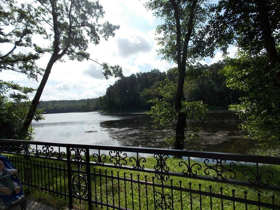 За месяц в городских озерах утонули пять калининградцев - Новости Калининграда