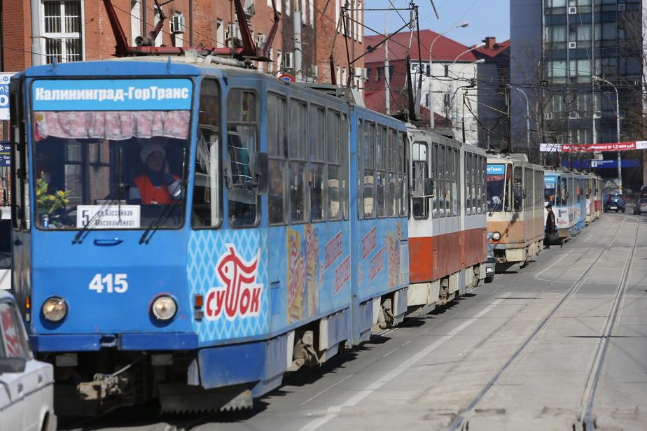 Калининградцы о новой маршрутной сети: на что потратили деньги? - Новости Калининграда