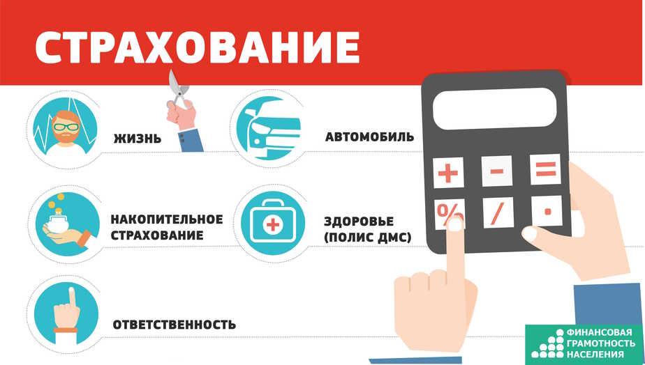 Накопительное или коробочное: выбираем вид страхования - Новости Калининграда