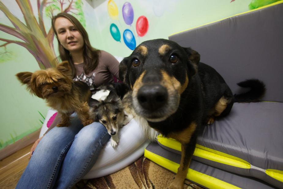 """На фото Мария Хамзина и её собаки / """"Клопс"""""""