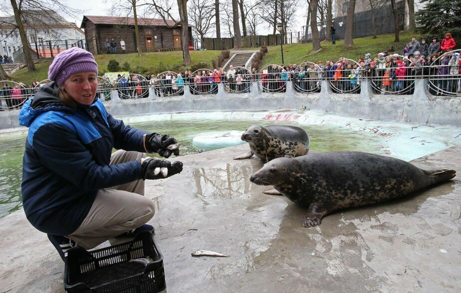 На фото Надежда Сривастава до нападения / Фото: Игорь Зарембо, предоставлено Калининградском зоопарком