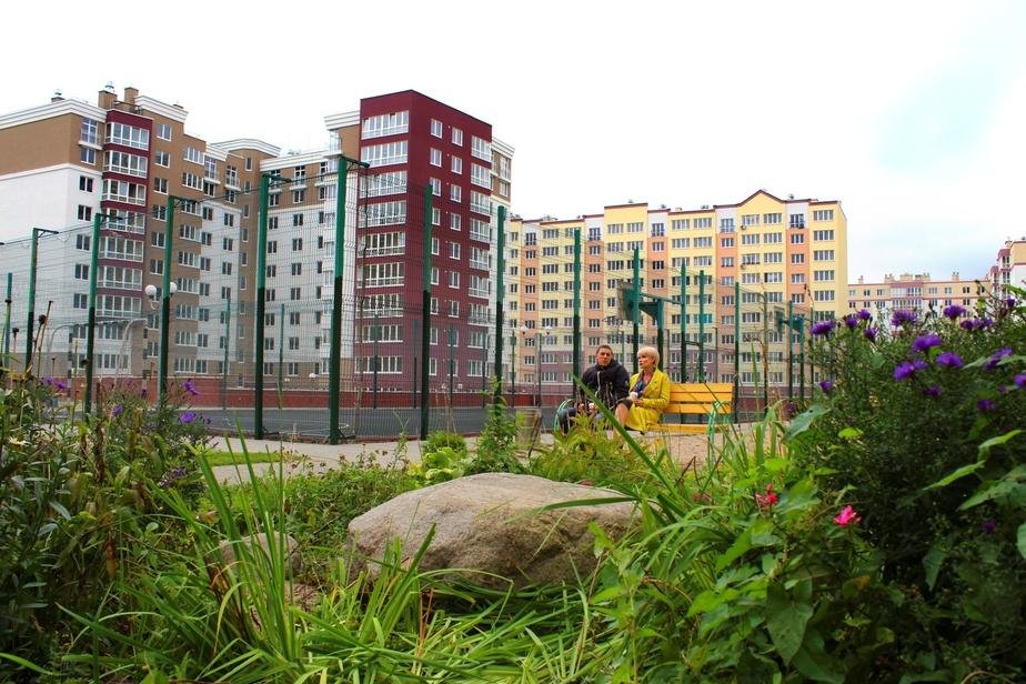 Как правильно выбрать квартиру? - Новости Калининграда