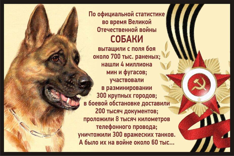 Facebook / Екатерина Карамарина