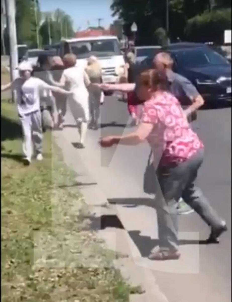 На ул. Гагарина автомобилисты перегородили дорогу, чтобы спасти утят (видео)  - Новости Калининграда   Кадр видеозаписи