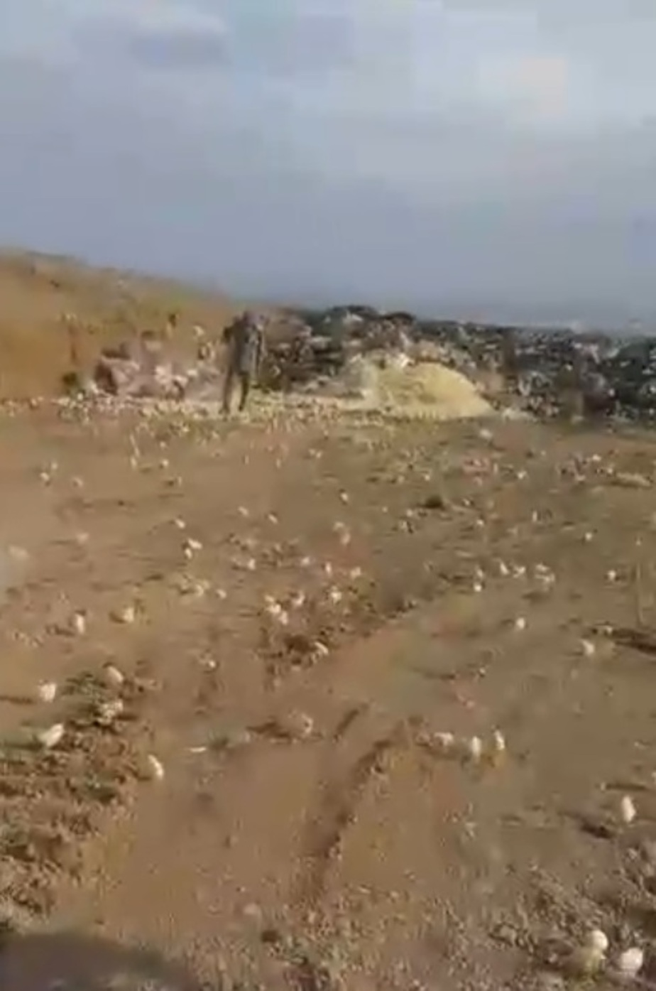 Кадр из видеозаписи