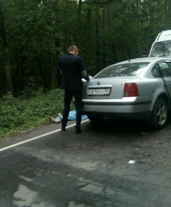 На Балтийской трассе лоб в лоб столкнулись два автомобиля, есть погибший (обновлено)  - Новости Калининграда | Фото: Денис Баранов