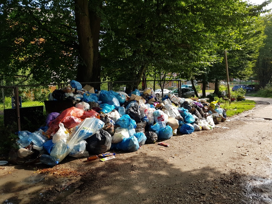 В Балтийске неделю не вывозят мусор - Новости Калининграда | Фото: Елена Бушманова
