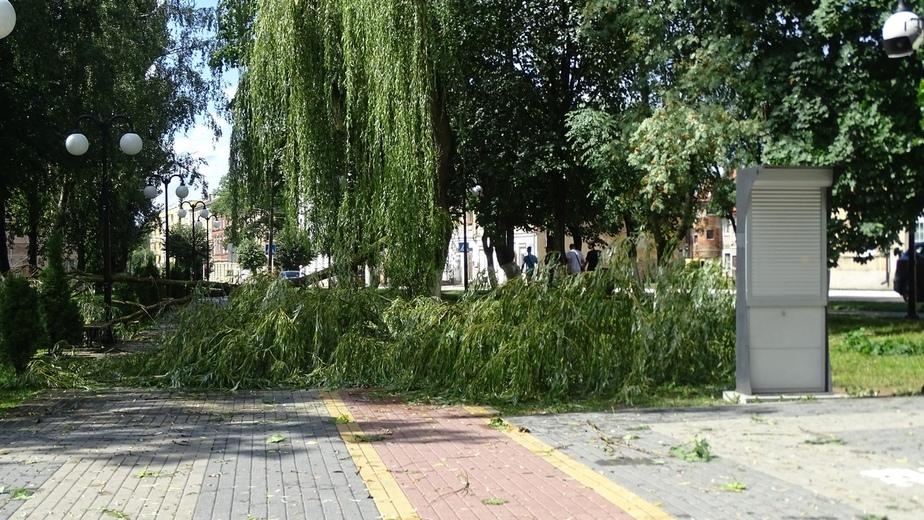 """Фото: сообщество """"Гусев HD"""" во """"Вконтакте"""""""