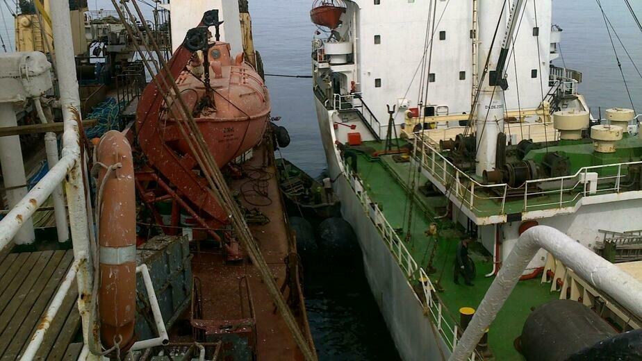 Выгрузка улова на транспортное судно на промысле в Северо-Восточной Атлантике. Фото: Валерий Мезенцев