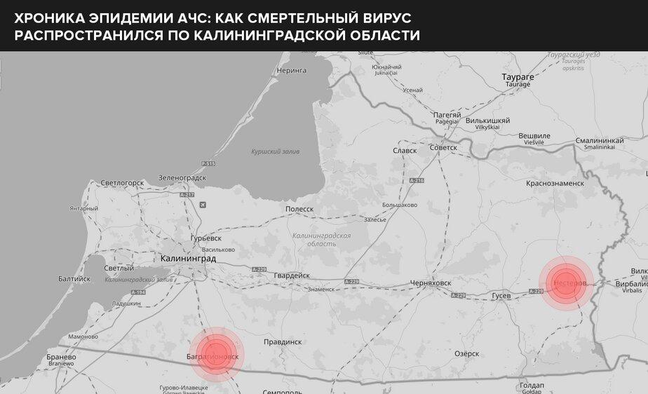 Зима-2018 — вспышки в Нестерове (восток области) и Багратионовске (юг)