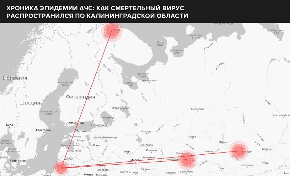 Из Калининграда до Екатеринбурга, Татарстан, Мурманск.