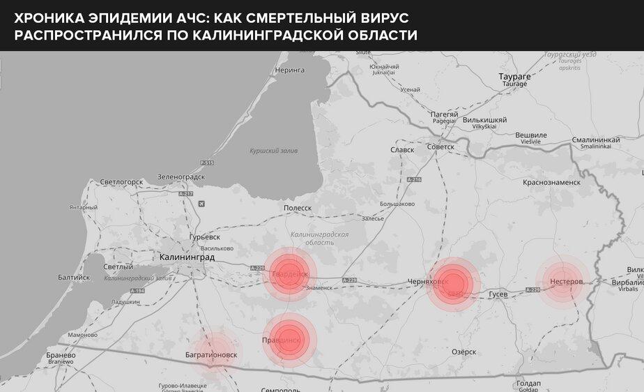 Правдинский район (чуть правее от Правдинска) и южная часть Гвардейского (самый центр области), западная часть Черняховского округа