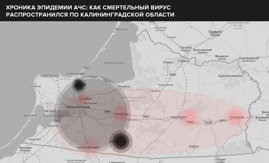 Правдинский район. От Правдинска — до Калининграда; от Правдинска — до юго-западной части Зеленоградского округа