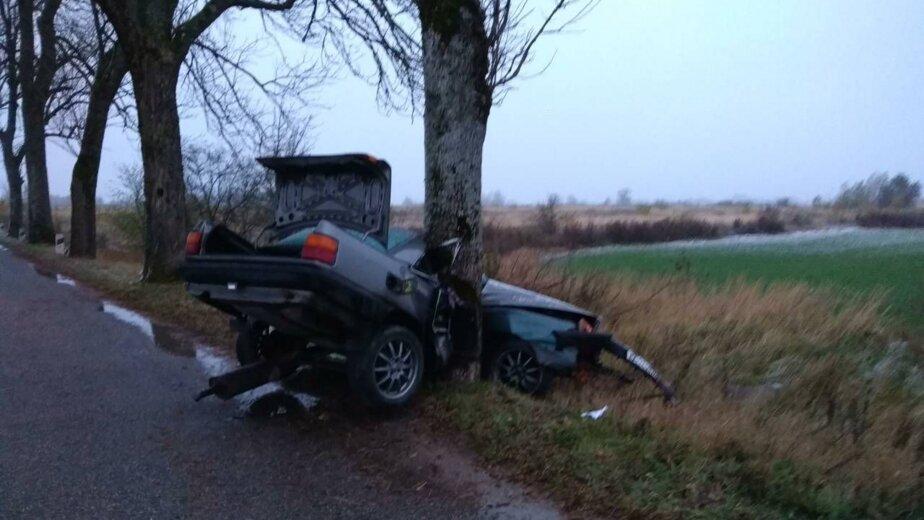 В Черняховском районе из-за столкновения с деревом погиб водитель Audi - Новости Калининграда   Фото: очевидцы
