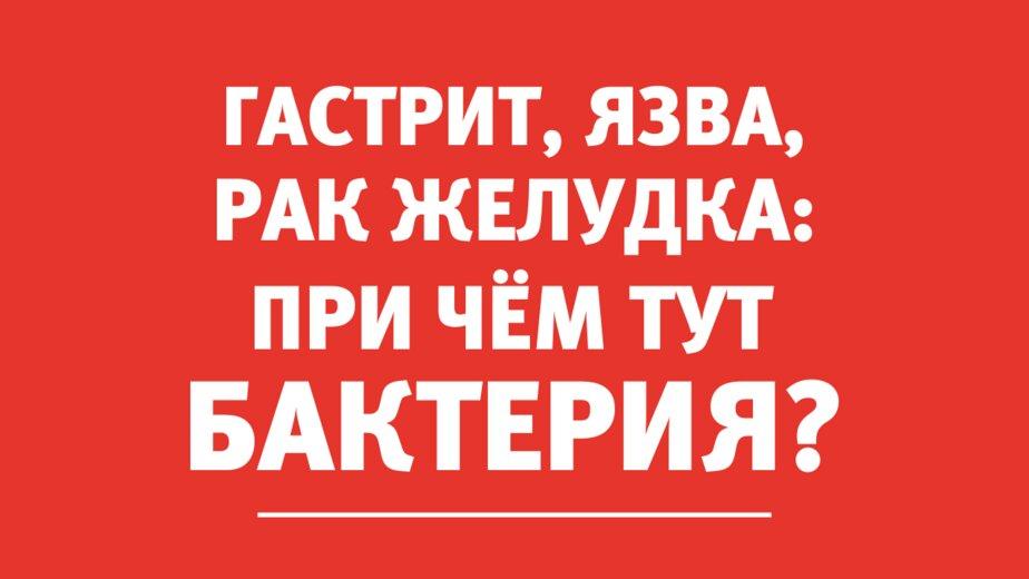 Гастроэнтеролог: Эта бактерия — одна из причин гастрита, язвы и рака желудка - Новости Калининграда