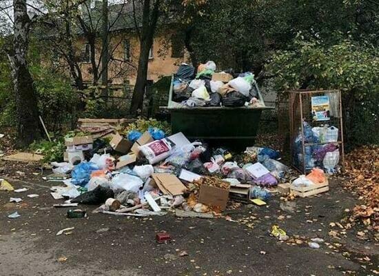 Со двора дома на ул. Художественной неделями не вывозят мусор (фото) - Новости Калининграда | Фото: жительница дома