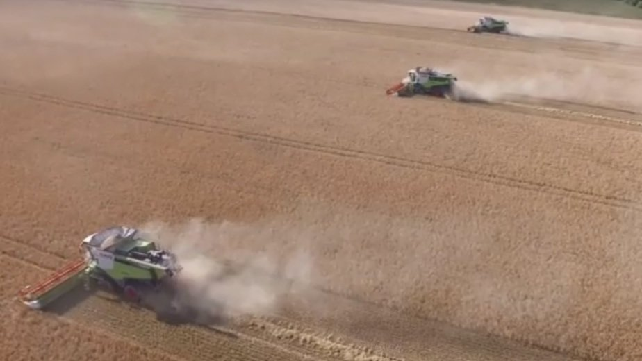 Как убирали урожай на калининградских полях — с высоты птичьего полёта (видео) - Новости Калининграда | Кадр видеозаписи