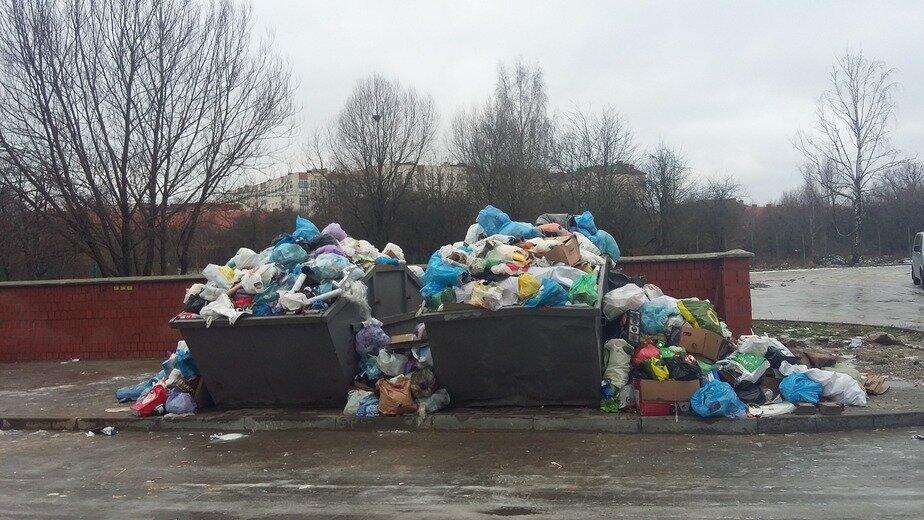 Глава Калининграда заявил о решении проблемы с вывозом мусора - Новости Калининграда | Фото: пресс-служба администрации Калининграда