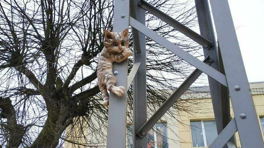 В Зеленоградске установили новые скульптуры котов (фото) - Новости Калининграда | Фото: администрация Зеленограсдкого городского округа